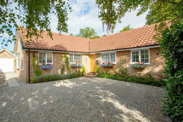 Thumbnail Detached bungalow for sale in Hambleton Garth, Easingwold, York