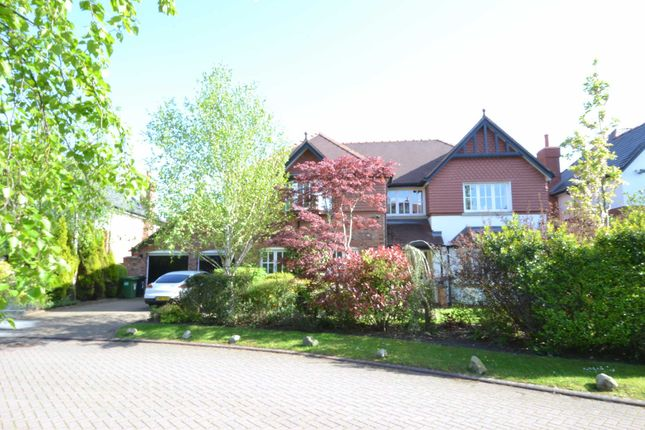 Thumbnail Detached house to rent in Knightsbridge Close, Wilmslow