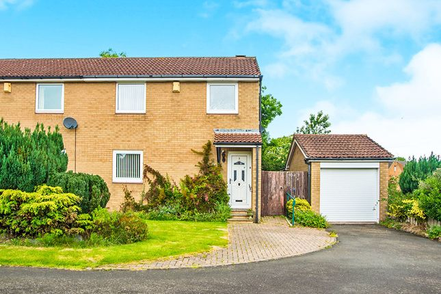 Thumbnail Semi-detached house for sale in Arkle Court, Alnwick
