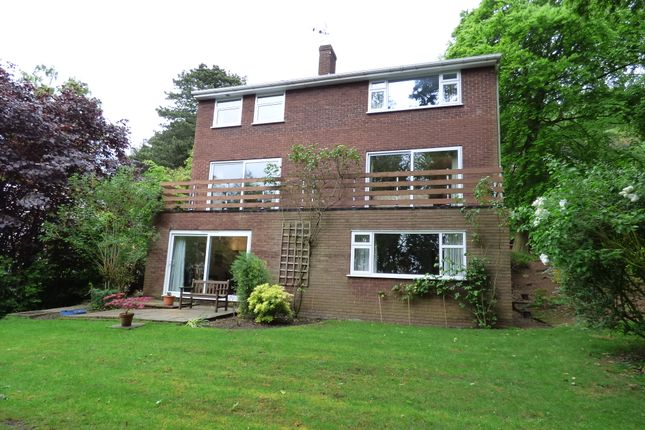 Thumbnail Detached house for sale in Alvanley Road, Helsby, Frodsham