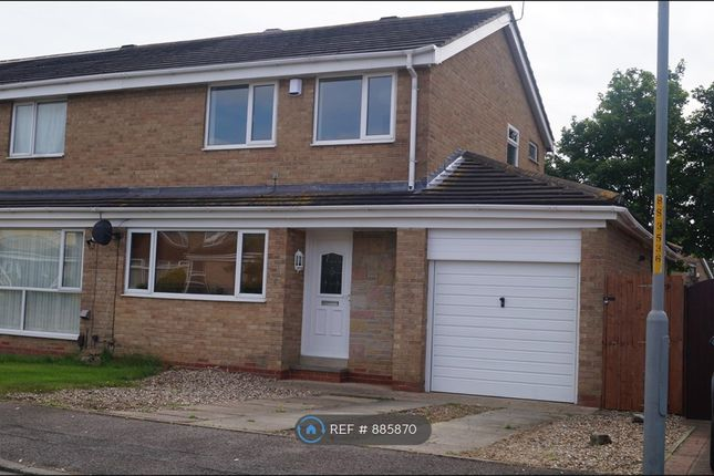 Thumbnail Semi-detached house to rent in Spell Close, Yarm