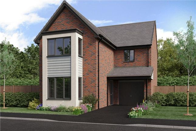 "Thumbnail Detached house for sale in ""The Malory"" at Bristlecone, Sunderland"
