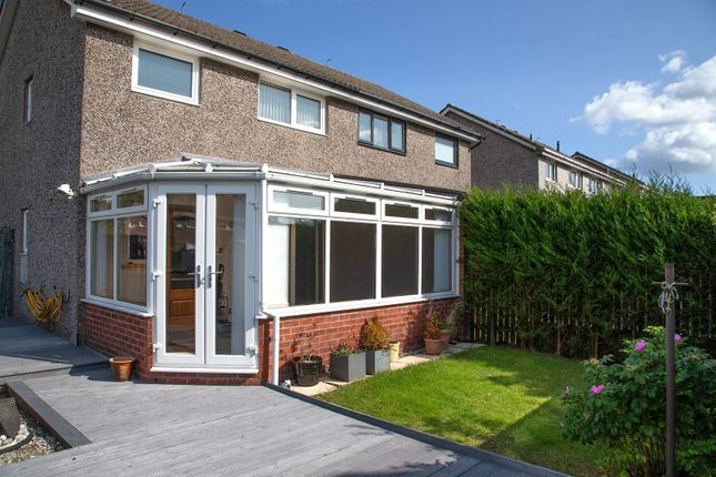 Thumbnail Semi-detached house to rent in Braehead Road, Kirkcaldy