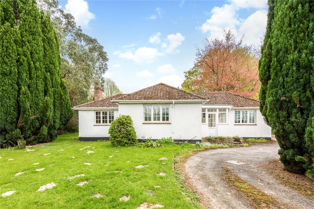 Thumbnail Detached bungalow for sale in Turners Hill Road, Crawley Down, West Sussex