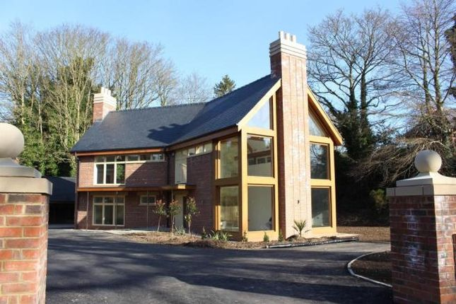 Thumbnail Detached house to rent in St. Marys Lane, Louth