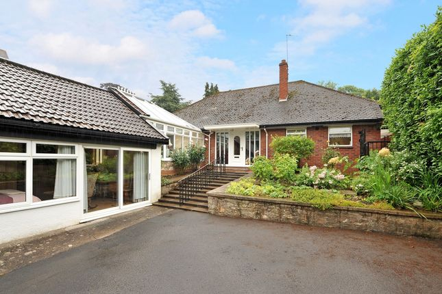 Thumbnail Detached house to rent in The Avenue, Sneyd Park, Bristol