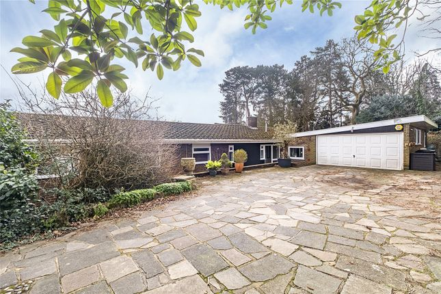 Thumbnail Bungalow for sale in Coombe Ridings, Kingston Hill, Surrey