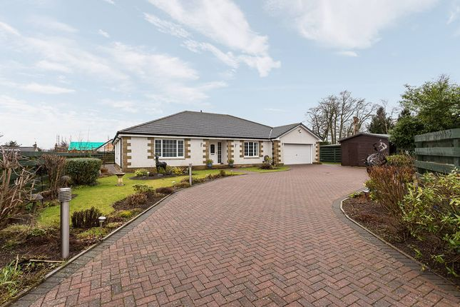 Thumbnail Bungalow for sale in West Hemming Street, Letham, Forfar