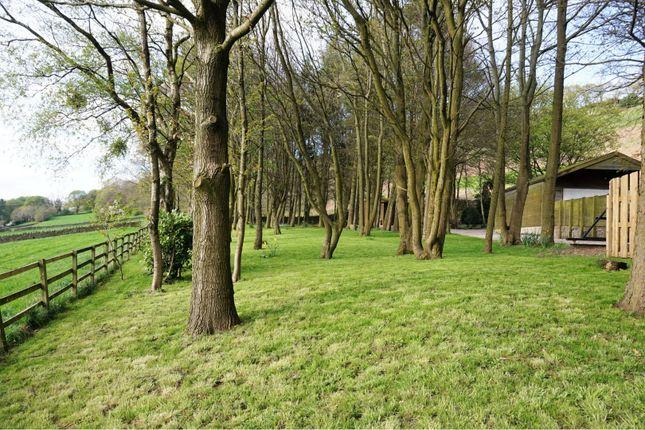 Woodland of Greenhill Lane, Bingley BD16