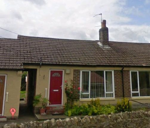 Thumbnail Semi-detached bungalow to rent in Toft Hill, High Etherley
