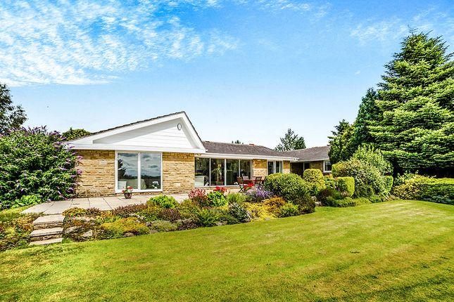 Thumbnail Bungalow for sale in Hedge Top Lane, Northowram, Halifax
