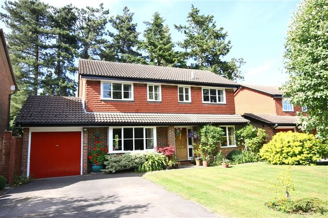 Thumbnail Detached house for sale in Spencer Gardens, Englefield Green, Surrey