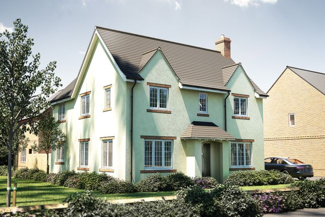 """Thumbnail Detached house for sale in """"The Osterley"""" at Oakley Wood Road, Bishops Tachbrook, Leamington Spa"""
