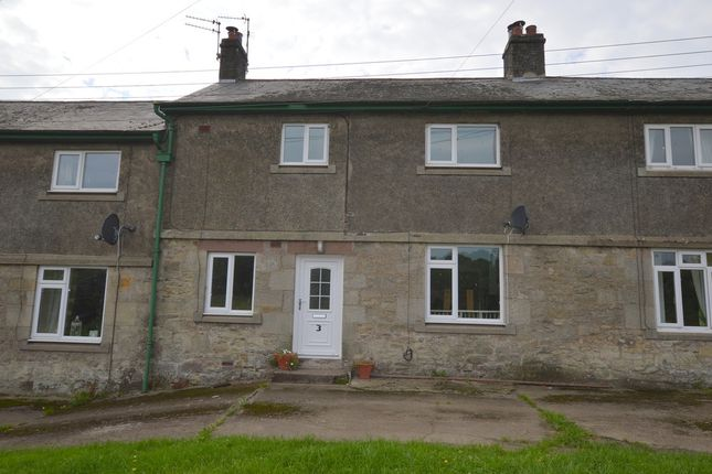 Thumbnail Terraced house to rent in 3 West Newbiggin Farm Cottages, Norham, Berwick Upon Tweed, Northumberland