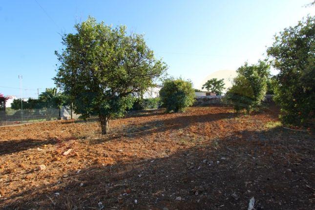 Thumbnail Land for sale in Cacela, Vila Nova De Cacela, Vila Real De Santo António