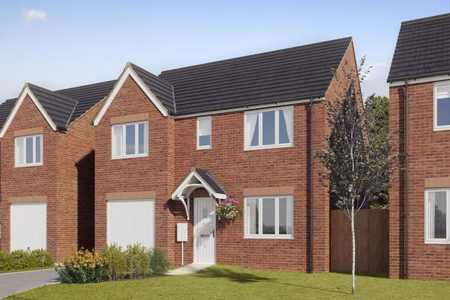 """Thumbnail Detached house for sale in """"The Winster"""" at Coquet Enterprise Park, Amble, Morpeth"""