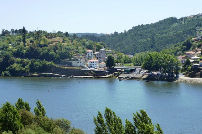 Thumbnail Leisure/hospitality for sale in P681, Old Factory And 7 Ha Farm With Manor Houses, Portugal