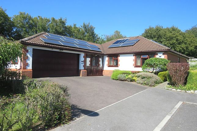 4 bed detached bungalow for sale in Woodcock Way, Chardstock, Axminster EX13