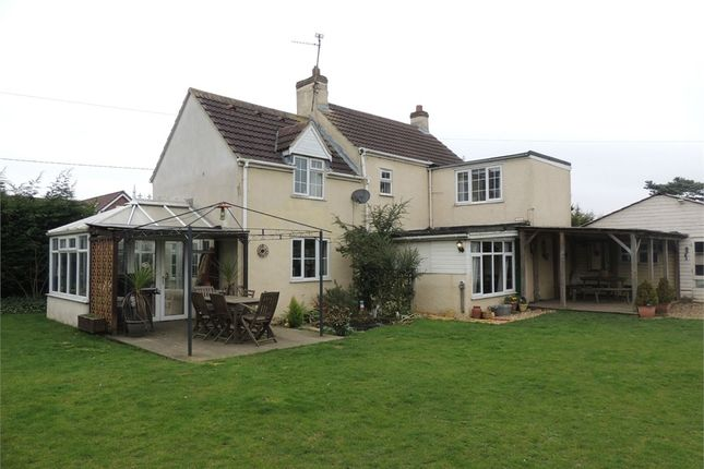 Thumbnail Detached house for sale in New Road, Upwell, Wisbech