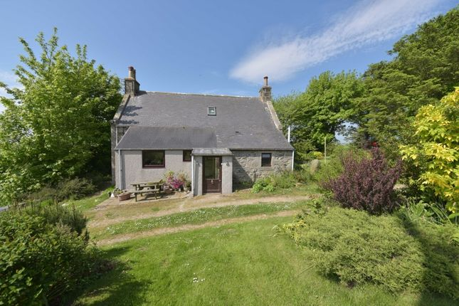 Thumbnail Detached house for sale in Maud, Peterhead, Aberdeenshire