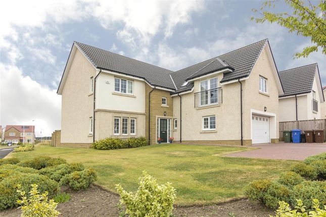 Thumbnail Detached house for sale in Macgregor Place, Falkirk