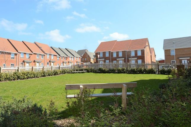Thumbnail Flat to rent in Beauchamp Drive, Newport