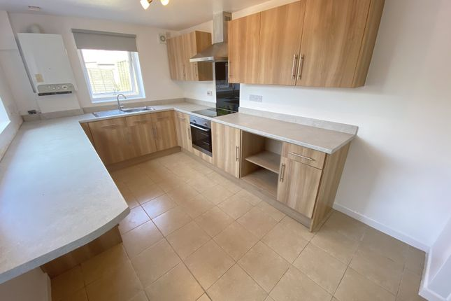 Thumbnail Terraced house to rent in Halstead Street, Newport, Gwent