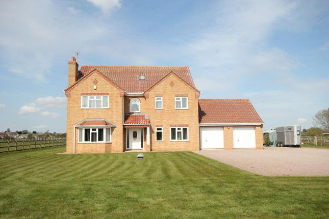 Thumbnail Detached house for sale in Fallow Corner Drove, Manea, March