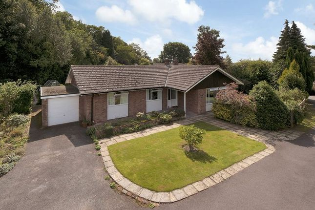 Thumbnail Bungalow for sale in Windmill Hill, Brenchley, Tonbridge