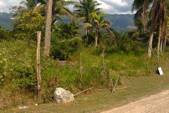 Land for sale in Linstead, Saint Catherine, Jamaica