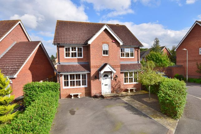 Thumbnail Detached house for sale in Kestrel Close, Kingsnorth, Ashford