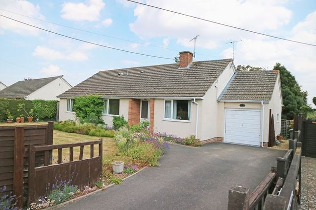 Thumbnail Detached bungalow for sale in Slough Green, Taunton