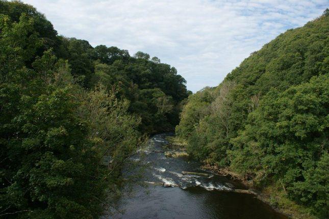 From Bridge of Pentrecwrt, Llandysul, 5Bd SA44