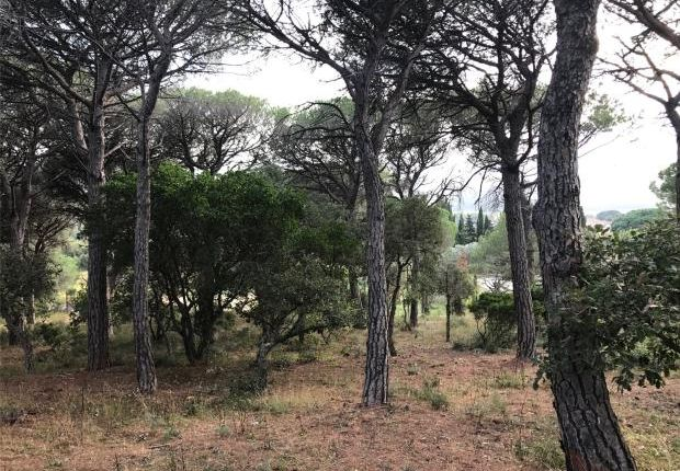 Thumbnail Land for sale in Ramatuelle, Pampelonne, Var Coast, French Riviera, 83350