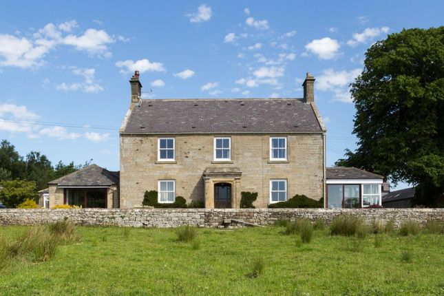 Thumbnail Detached house for sale in Coldtown, Hexham, Northumberland