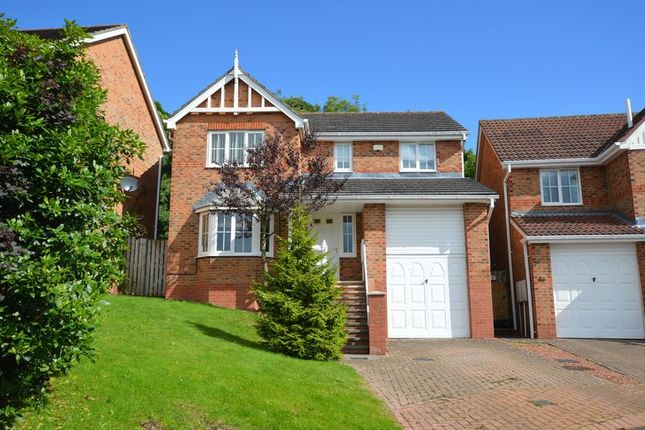 Thumbnail Detached house for sale in Aydon View, Alnwick