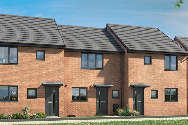 """Thumbnail Property for sale in """"The Normanby"""" at Hawthorn Avenue, Hull"""