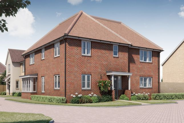 Thumbnail Detached house for sale in Tavistock Place, Bedford, Bedford