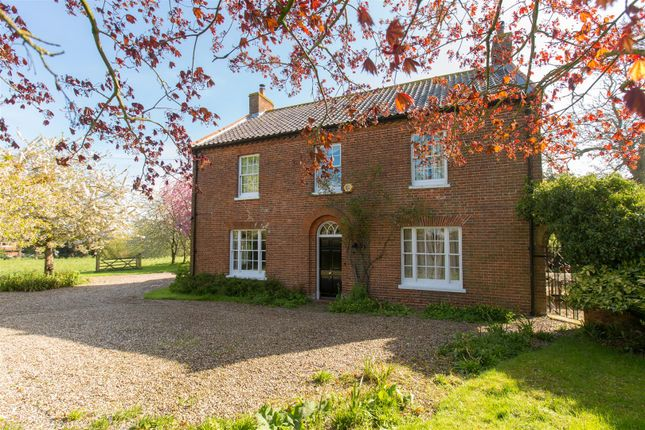 Thumbnail Detached house for sale in Thurlton, Norwich