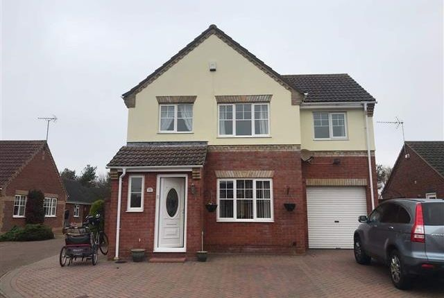 Thumbnail Detached house to rent in El Alamein Way, Bradwell, Great Yarmouth