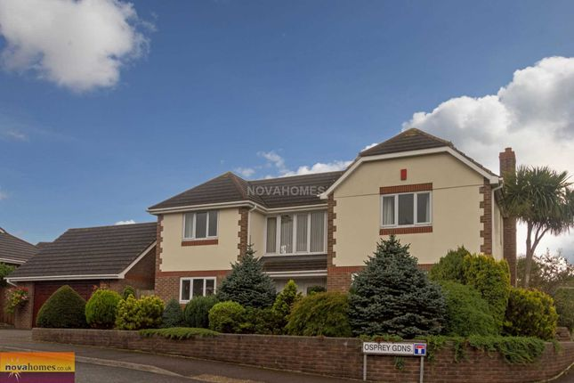 Thumbnail Detached house for sale in Osprey Gardens, Elburton
