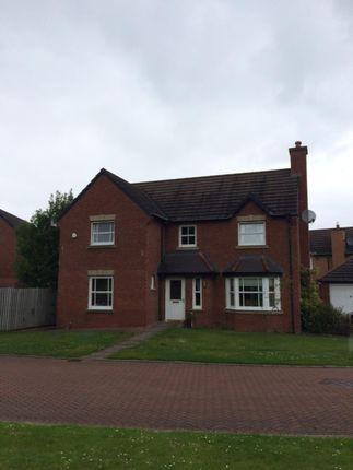 Thumbnail Detached house to rent in Newtongrange Place, Newtongrange, Midlothian