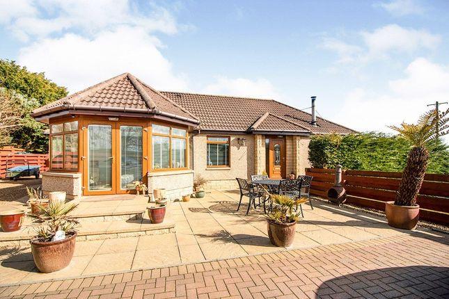 Thumbnail Detached bungalow for sale in Bush, St. Cyrus, Montrose