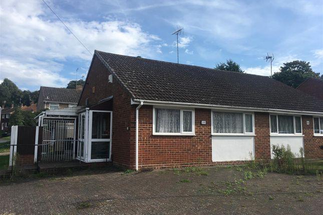 Thumbnail Semi-detached bungalow to rent in Quantock Drive, Ashford