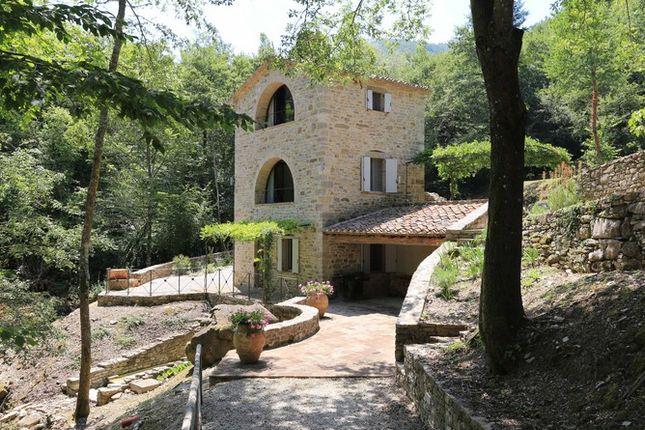 Annex Lead of Il Molinello, Seano, Cortona, Tuscany