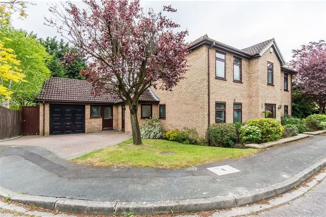 Thumbnail Detached house for sale in Reed Close, Trumpington, Cambridge