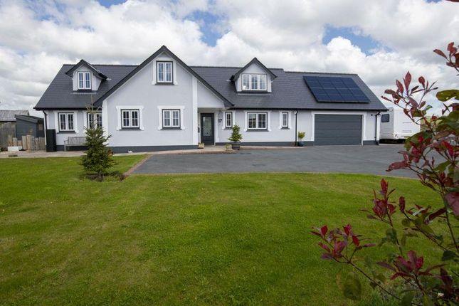 Thumbnail Detached house for sale in Caerwgan, Aberbanc