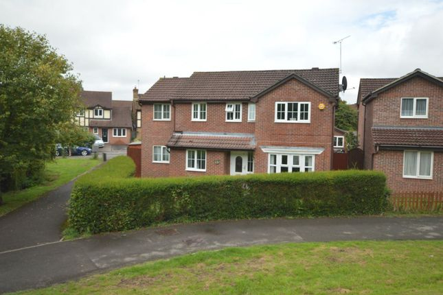 Thumbnail Property to rent in Friesian Close, Shaw, Swindon