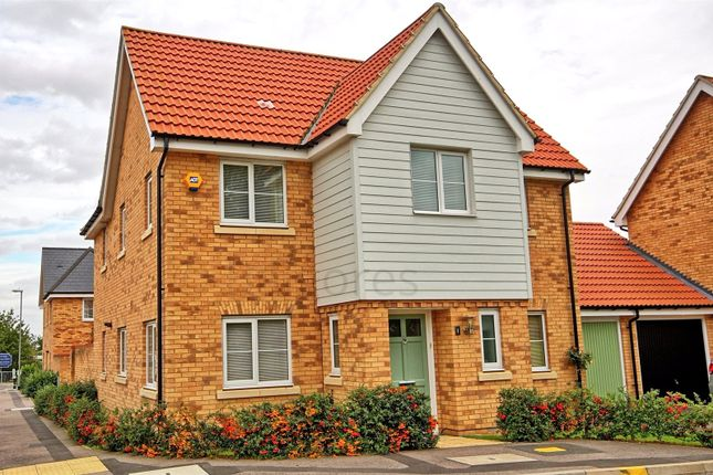 Thumbnail Link-detached house for sale in Markhams Close, Basildon, Essex