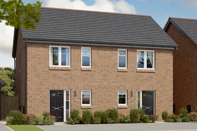 """Semi-detached house for sale in """"The Coleford"""" at Berry Hill, Mansfield"""